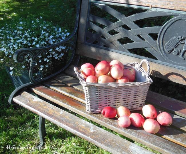 Opprydding i hagemøbler, hageputer og parasoller